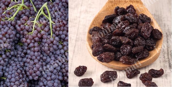 مویز سرخ چیست و از چه انگوری تولید می شود؟