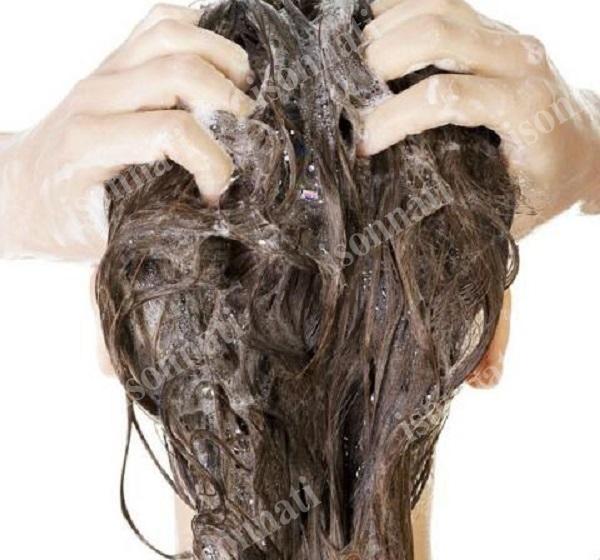 شامپو گیاهی برای موهای چرب جهت درمان ریزش مو
