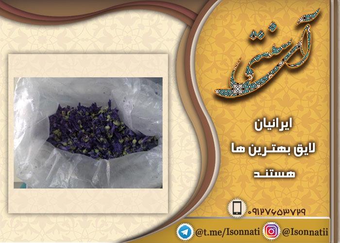 فروش عمده گل ختمی ایرانی