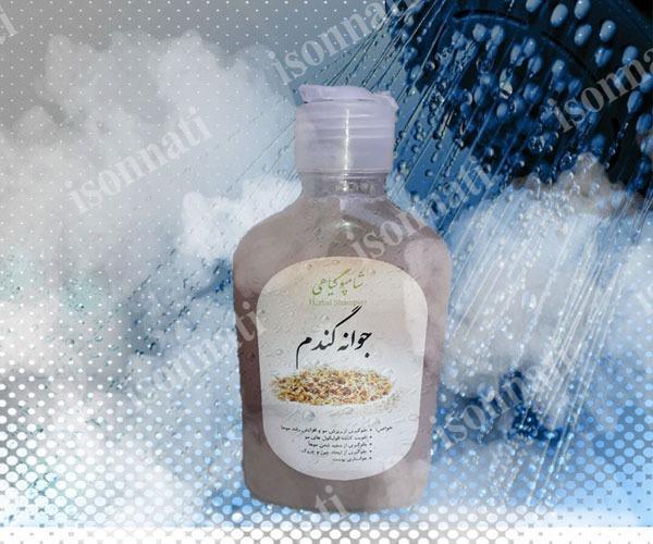شامپو جوانه گندم طبیعی مناسب انواع مو | فروش اینترنتی
