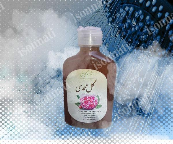 فروش شامپو گل محمدی صد در صد گیاهی به صورت آنلاین