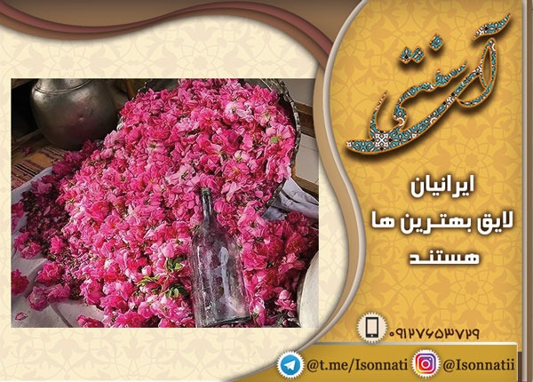 تولید گلاب از بهترین گل محمدی کاشان